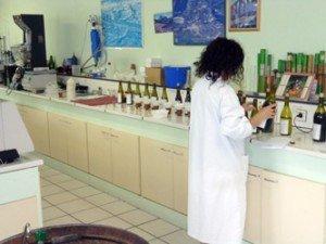 laboratoire1